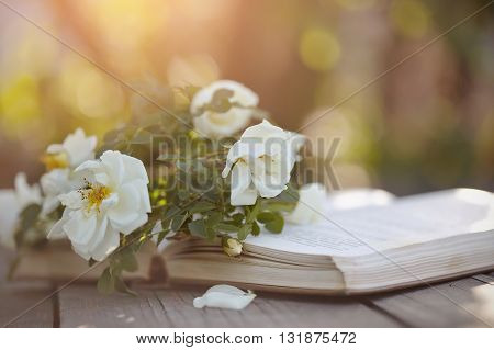 The bouquet of a dogrose lies on the open book on a wooden table.