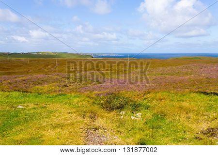 Rural Scottish Panorama