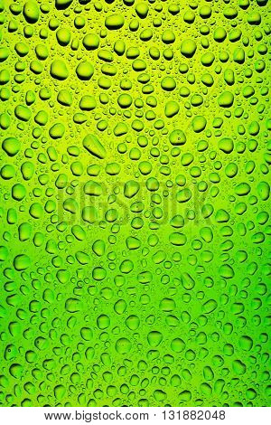Green Bottle Beer Texture