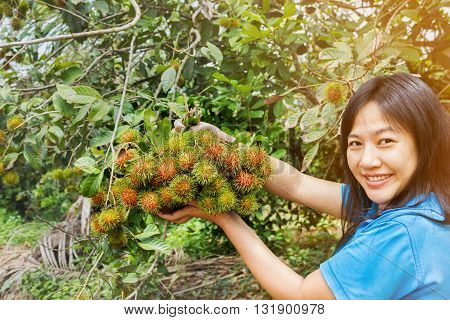 Asian Women Hold Or Presenting Fruits, Rambutan Bunch, Organic Fresh From Farm Garden On Tropical Ra