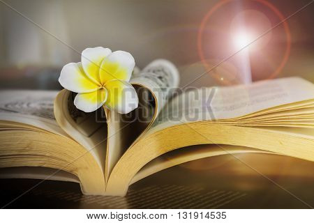 Sweet Romantic Flower Plumeria Or Frangipani On Book And Heart Shape On Still-life Dark Tone With Le