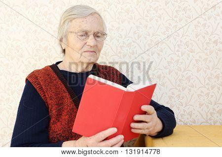 Grandma portrait Grandma sitting at home and reading a book