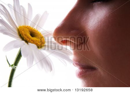 Girl smelling camomile isolated on white