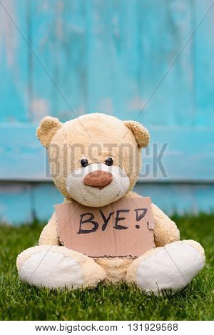 Teddy Bear Holding Cardboard With Information Bye