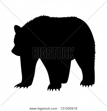 forest bear images on white background vector illustration