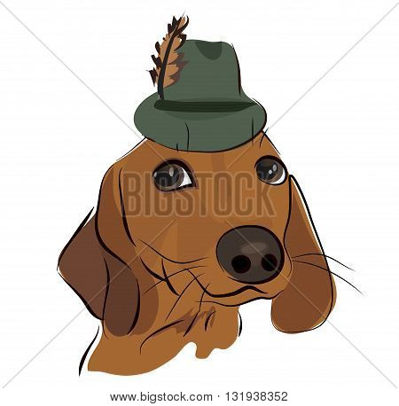 Cute Dachshund Dog with a Hat with Feather