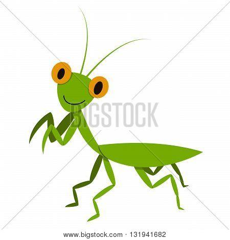 Mantis Mantodea grasshopper in flat style vector animal