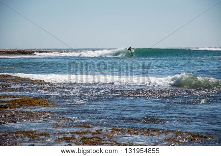 KALBARRI,WA,AUSTRALIA-APRIL 20,2016: Surfer surfing the left point break in the turquoise Indian Ocean waves at Jake's Point with a watchful dog on the rock outcropping in Kalbarri, Western Australia.