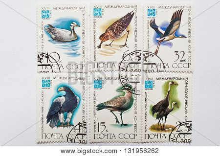 Uzhgorod, Ukraine - Circa May, 2016: Collection Of Postage Stamps Printed In Ussr Shows Birds From X