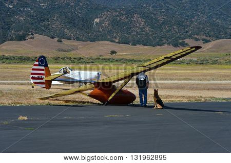 TEHACHAPI, CA - MAY 28, 2016: The tow pilot's dog waits patiently as her master gets ready to tow a Bowlus Baby Albatross aloft during the Western Vintage/Classic Regatta.