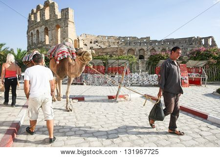 Man With Camels In El Jem