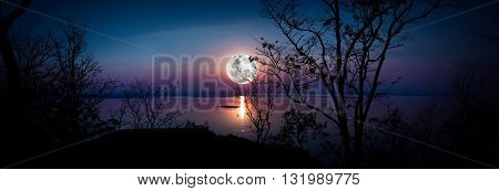 Panorama. Tree against sky over tranquil lake. Silhouettes of woods and beautiful moonrise bright full moon would make a nice picture. Beauty of nature use as background. Outdoors.