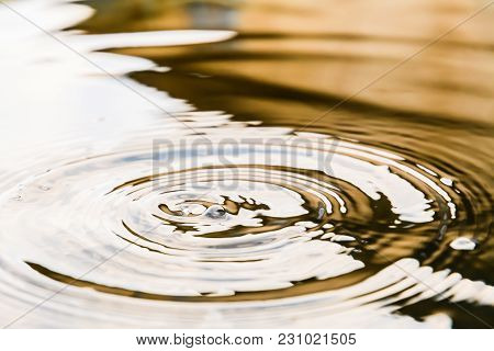 Circles On The Water Closeup With Falling Round Drops, Reflection Warm Colors