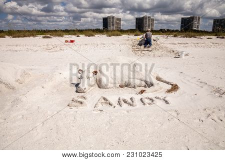 Marco Island, Florida, Usa - February 25, 2018: Artisan Sand Sculptures Of Cows And Bulls In The Whi
