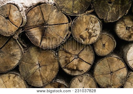 Fire Wood Stock ,pile Of Wood Logs