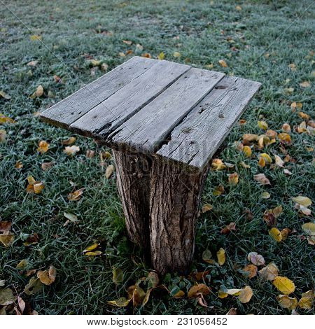 Ld Wooden Table Covered With Hoarfrost In The Garden On The Background Of Grass And Fallen Leaves. A