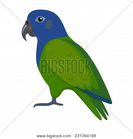 Blue-headed Pionus Parrot Icon In Flat Style. Exotic Tropical Bird Symbol On White Background.