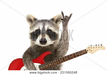 Portrait Of A Funny Raccoon With Electric Guitar, Showing A Rock Gesture, Isolated On White Backgrou