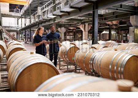 Two staff inspecting barrels in a wine factory warehouse