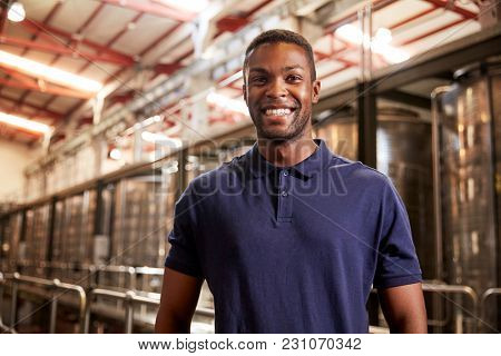 Portrait of a young black man working at a wine factory