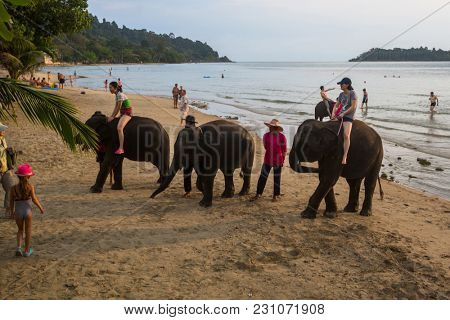 KOH CHANG, THAILAND - FEB 23, 2018: Elephants on the island. From farm animals nowadays development of the tourism industry found a new use for elephants in Thailand.