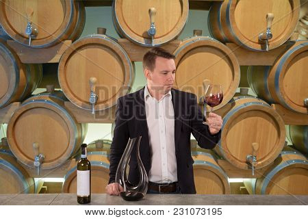 Handsome Sommelier Or Winemaker Looking At Wine Glass With Red Wine In The Cellar.
