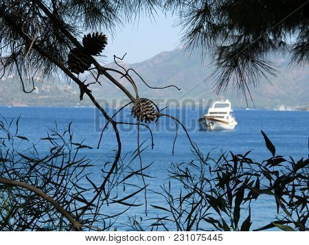 Turkish Sea Coast Near Marmaris. View Through The Pine Branches On The Bay