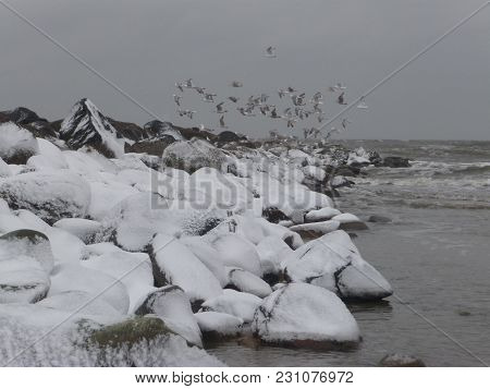 Winter At The Beach Of Blavand / Ho Denmark