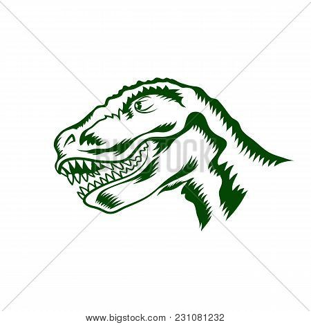 Head Of Dinosaur Isolated On White Background