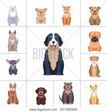 Set Of Happy Doggies Portraits, Pets Are Sitting With Smiling Muzzle And Hanging Out Tongue Flat Vec