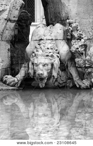 Lion - Detail of the Bernini foutain in Piazza Navona