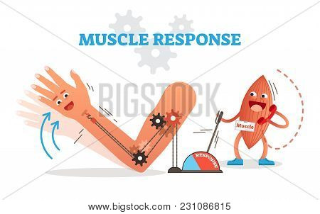 Muscle Response Conceptual Vector Illustration Scheme With Cartoon Muscle Character Receiving Nerve