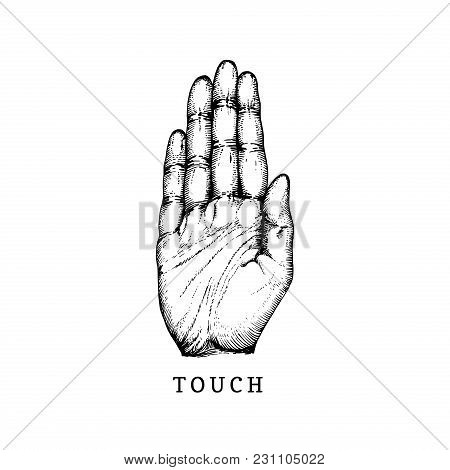 Hand Drawn Icon Of Touch Sense In Engraved Style. Vector Illustration Of Tactile Symbol Hand.
