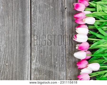 Pink Tulips On Vintage Wooden Planks For Easter Background
