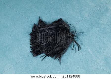 Wig On Carpet