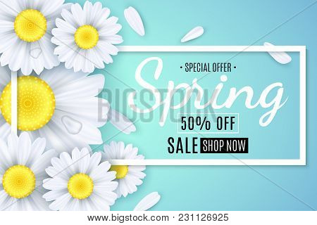 Spring Sale Banner. White Flowers Of Chamomile On A Light Blue Background. Seasonal Poster. Water Dr