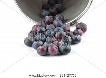 Colorful And Crisp Image Of Highbush Blueberry With Tin Bucket On White