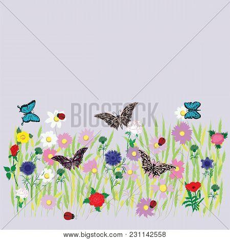 Flower Field Meadow Grass Bed Multicolor Flower Wheat Grass Daisy Peony Rose Cornflower Wildflowers