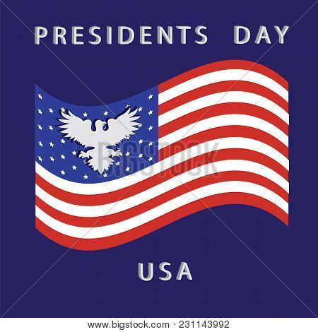 President's Day Us American Flag White Eagle On A Blue Background Vector