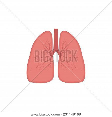 Lungs Icon, Flat Style. Internal Organs Of The Human Design Element, Logo. Anatomy, Medicine Concept