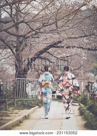 Kyoto, Japan - April 6, 2017 : Japanese Girls With Kimono Walking Under Cherry Blossoms Blooming Alo