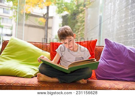 Boy Reading A Book At Home. The Child Engrossed In An Interesting Book