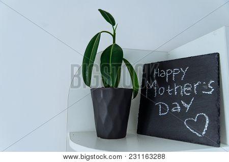 Happy Mother Day Text On Black Board Written With Chalk. Flower In Pot Near Black Board