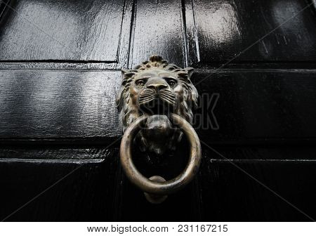 Vintage Lion Brass Door Knocker Ring In Mouth On Black Painted Wood