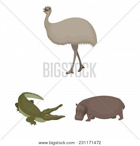 Different Animals Cartoon Icons In Set Collection For Design. Bird, Predator And Herbivore Vector Sy