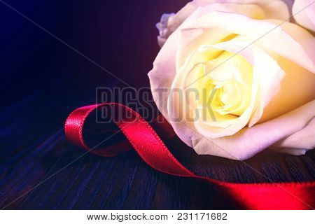 White Rose Flower With Reed Bow On Vintage Wooden Table With Dark Background. Greeting Card For Birt