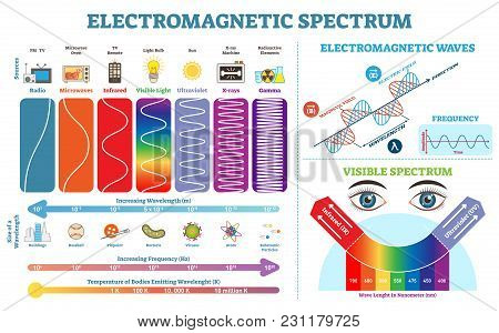 Full Electromagnetic Spectrum Information Collection, Vector Illustration Diagram With Wave Lengths,