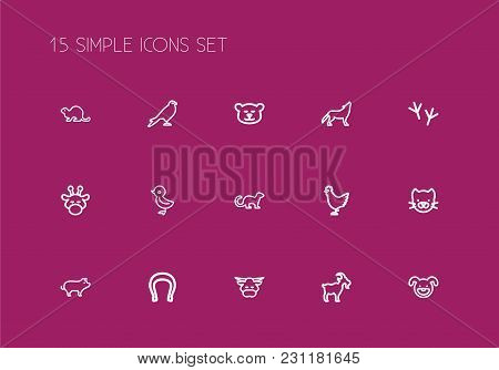 Set Of 15 Editable Zoology Icons Line Style. Includes Symbols Such As Hog, Puppy, Bull And More. Can