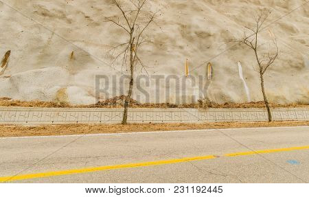 Two Barren Trees In Front Of Large Man-made Concrete Wall With Water Stains Under Small Drainage Pip