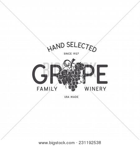 Family Wine Shop, Winery Logo Template Concept. Vine, Leaf And Typography Design. Stock Vector Emble